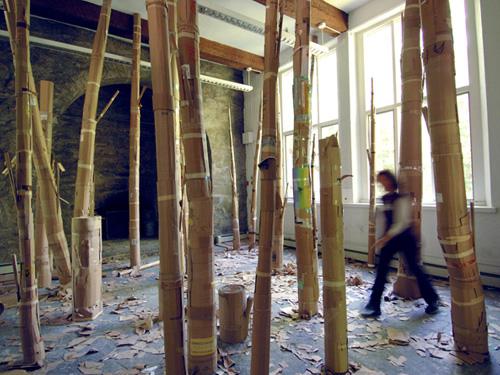 Installation: Uproot