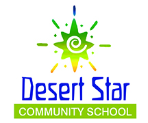 DSCS star logo color text bottom 2.5x3.jpg