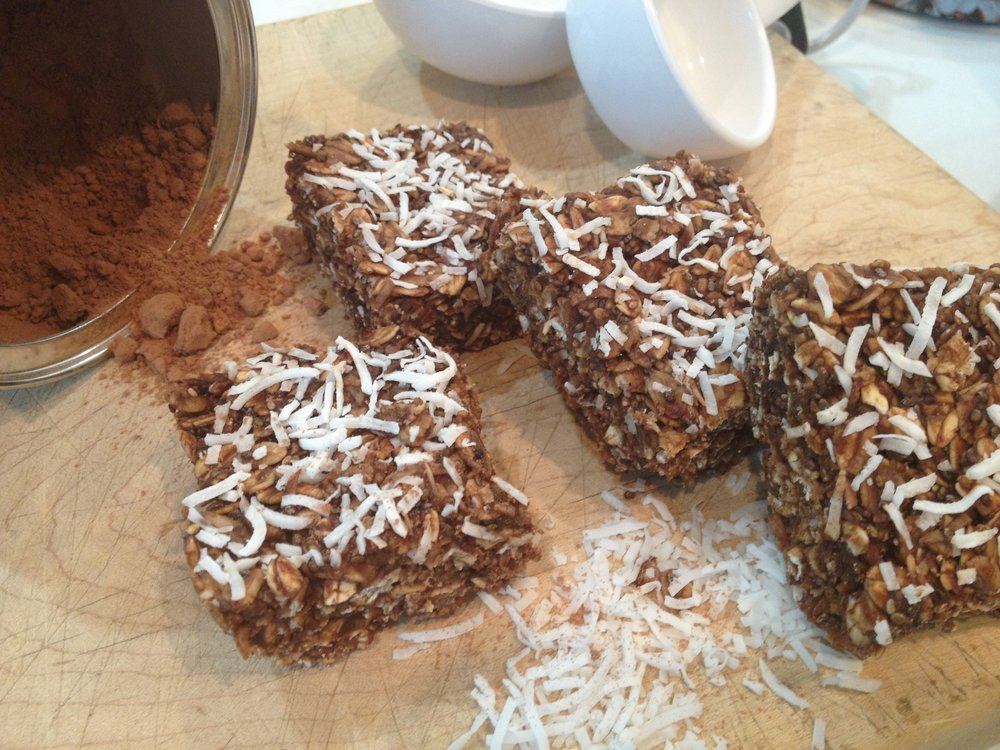 Fiddle Diddles (chocolate protein snack bar)
