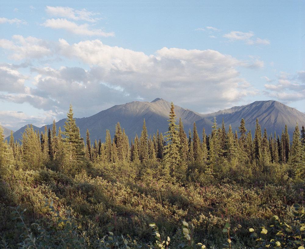 Alaska120color081.jpg