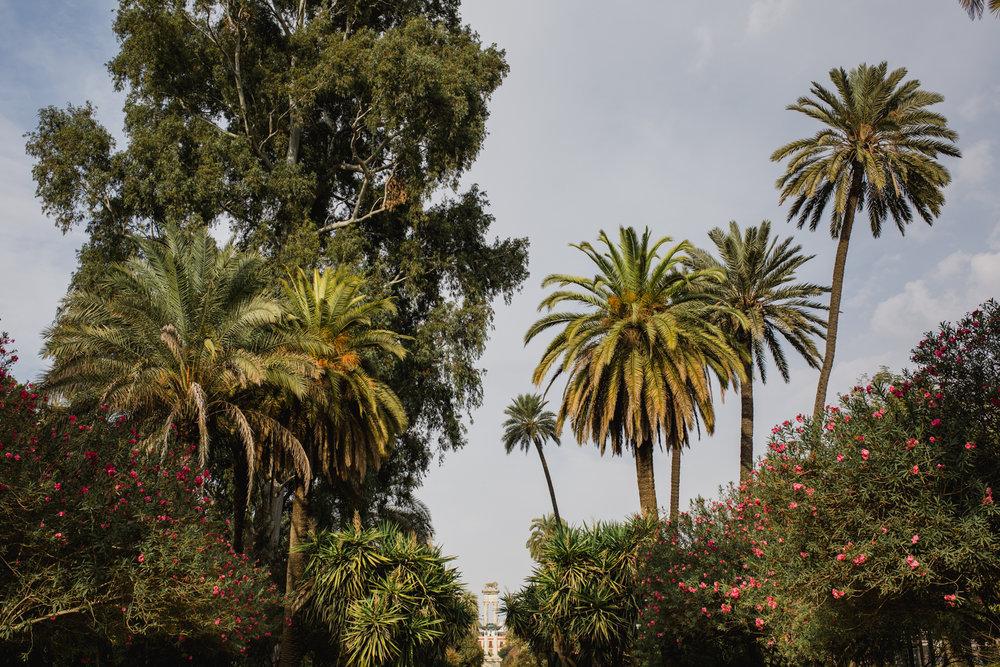 Postboda Sevilla. Carlos Pavón Fotografía 600257783-3.jpg