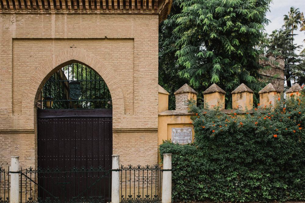 Postboda Sevilla. Carlos Pavón Fotografía 600257783-4.jpg