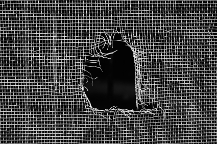 Window screens can get punctured or torn, but as long as the frame is in good shape repairs can be done by our service technicians. - Call store for info
