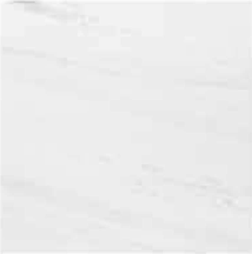 "BIANCO DOLOMITI EXTRA POLISHED STONE 3/4"" SLAB 2CM THICK"