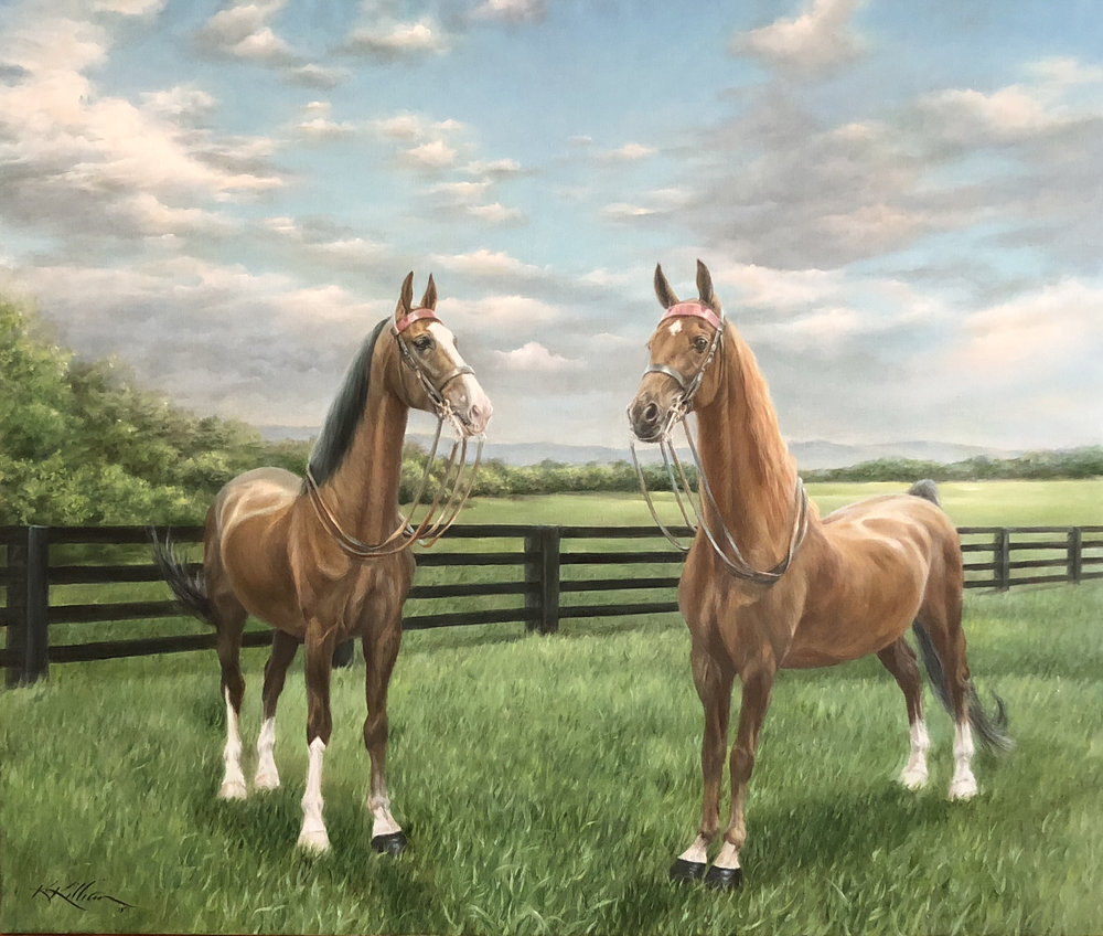 """Ready for Our Closeup"" Tuck and Blueberry  American Saddlebreds  Oil on Belgian linen; 38 x 45"" Collection Dr. Anne White Winston-Salem, NC ©2018 Karen Killian"