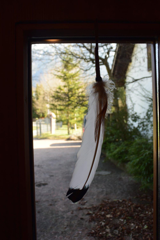DSC_2233 Fenster mit Feder.jpg