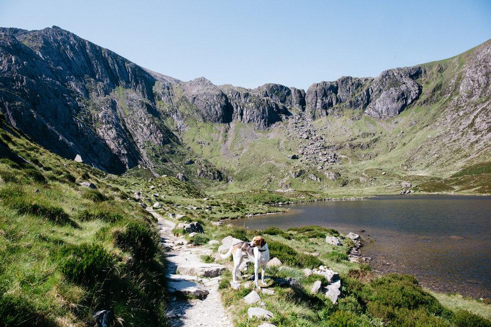 Snowdonia -