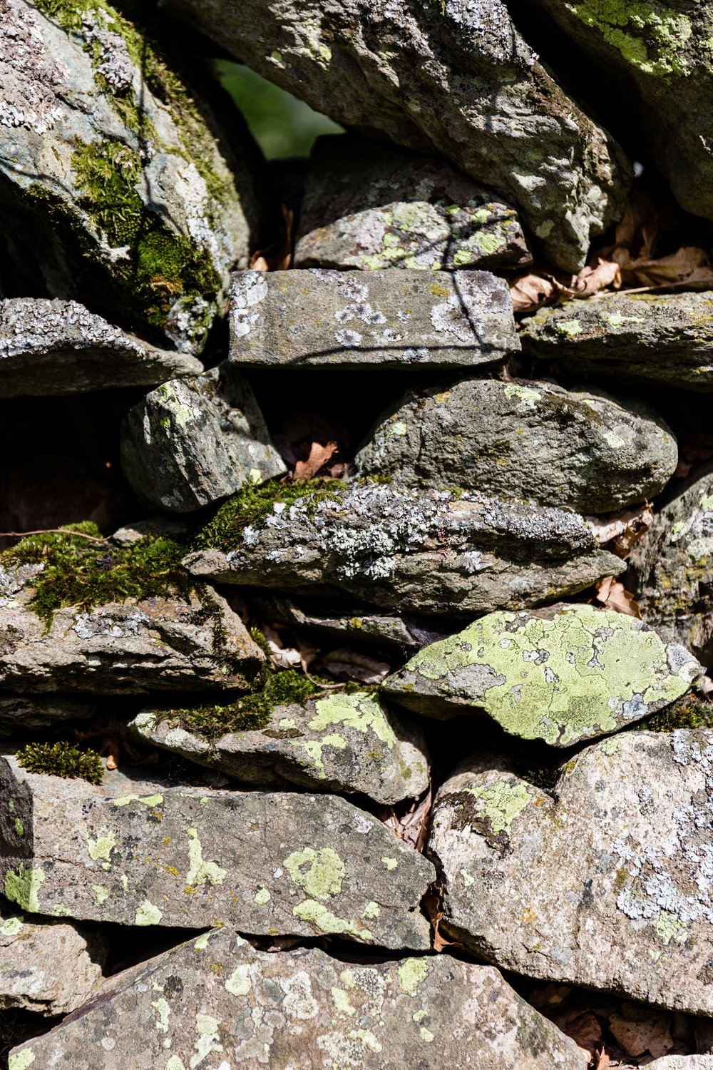 ...and beautiful dry-stone walls