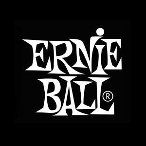 section-8-ernie-ball.png