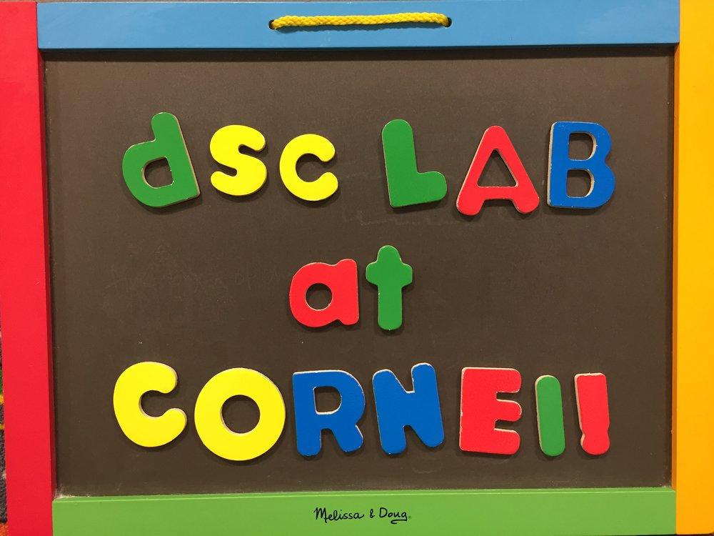 DSC Lab Cornell Chalkboard.jpg