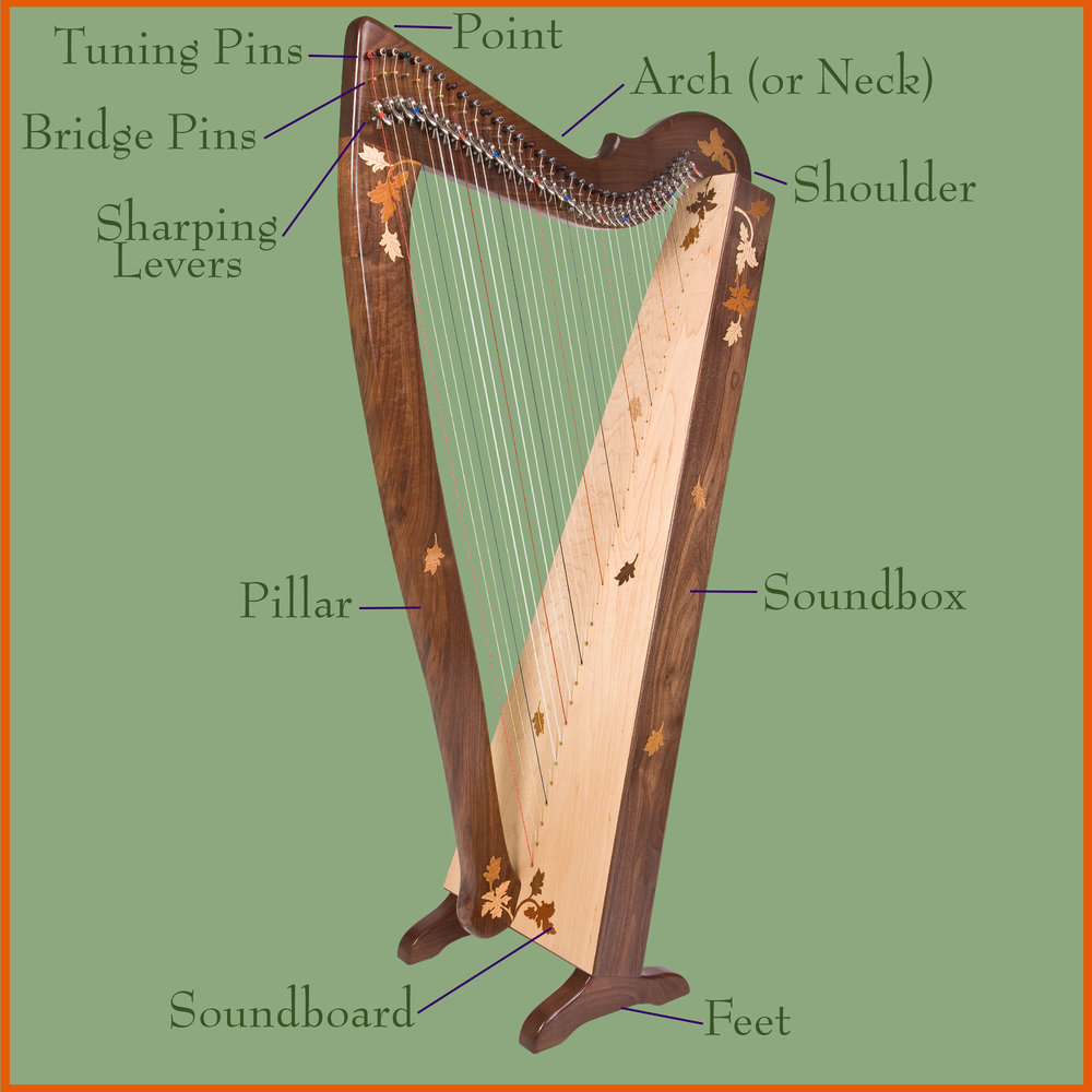 Parts of the Harp.jpg