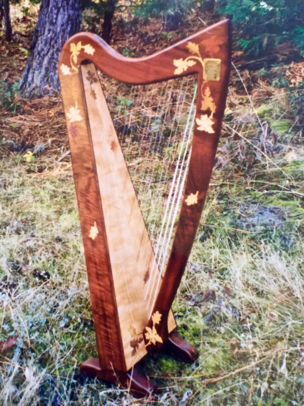 Rees Logan Meadows Harp in flamed California Walnut.