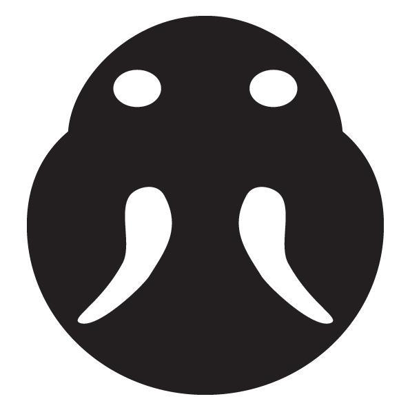 walrus.jpeg