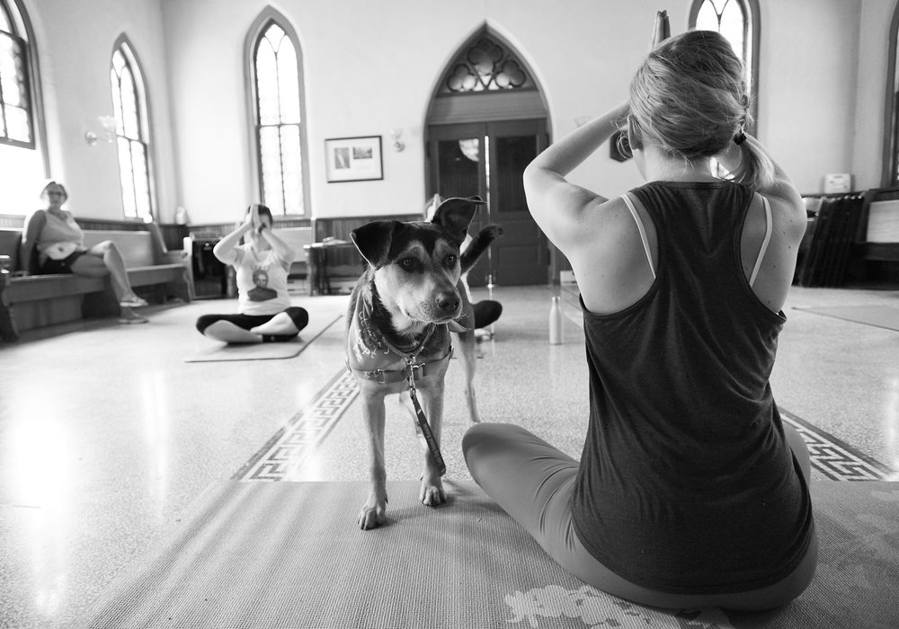 Puppy Yoga 047.jpg
