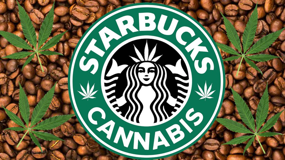 Let's be honest, as shameful as it is to admit, the idea of a marijuana Starbucks is pretty cool.