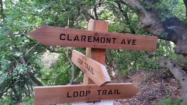 The trails throughout Garber Park are clearly marked with attractive wooden signs.