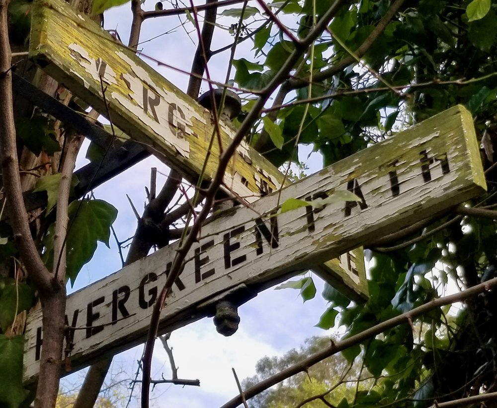 Evergreen signs.jpeg