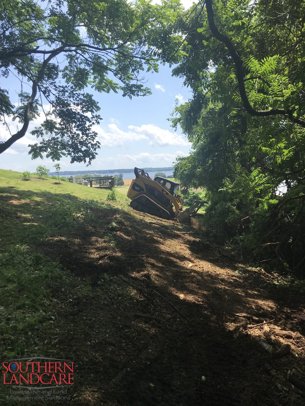 Clearing invasive species with our CAT MTL and Denis Cimaf forestry mulcher to Improve the view in Calvert County, MD. No permits or additional erosion control measures required.