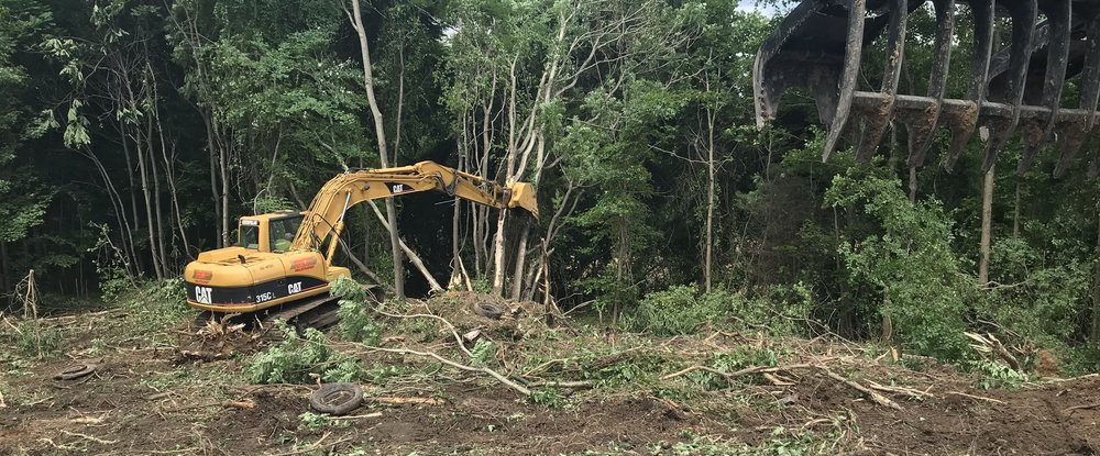 Clearing and old dump site overgrown with Tree of Heaven and other Invasives.   Tires, metal, and plastics were excavated and screened out, leaving our customer a trash-free seedbed