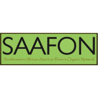 Saafon   Staffing Bridge  |  Executive Director   + Visit Website