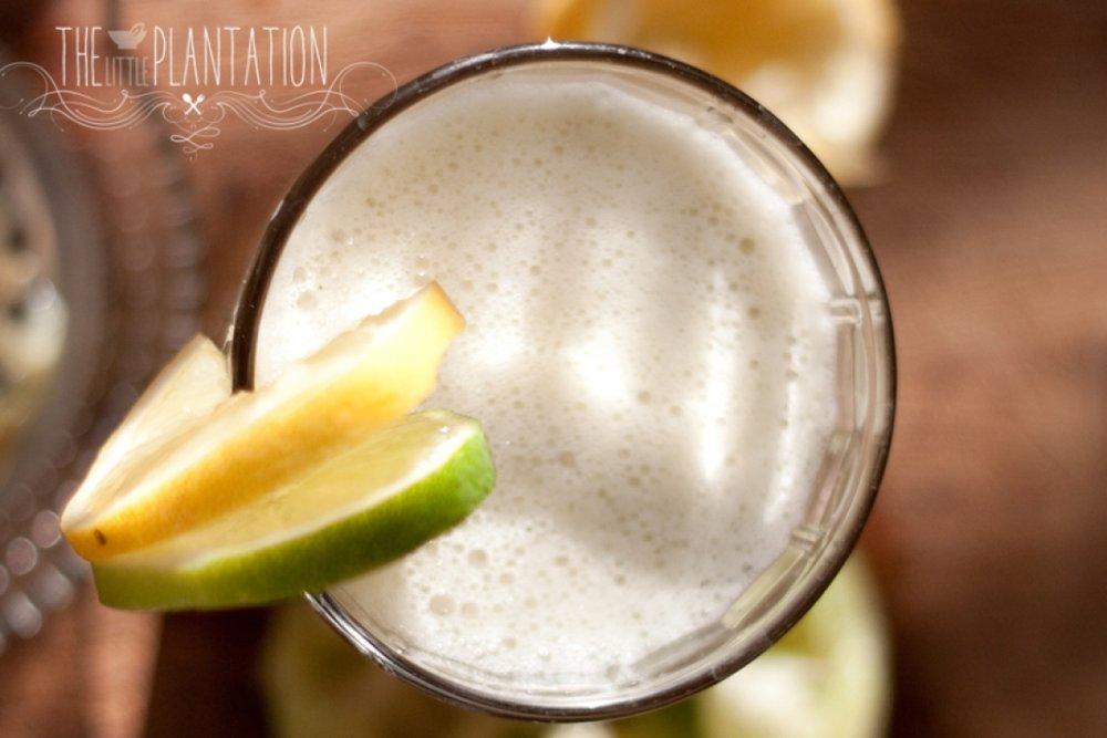 Vegan Mint Lime Lemonade - The Little Plantation