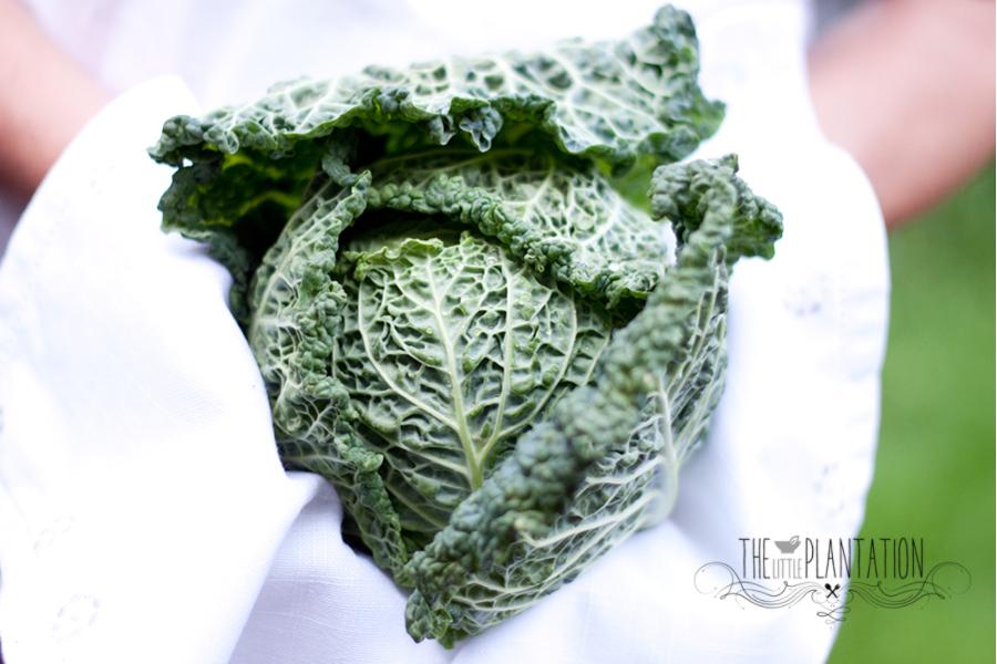 vegan coleslaw - The Little Plantation