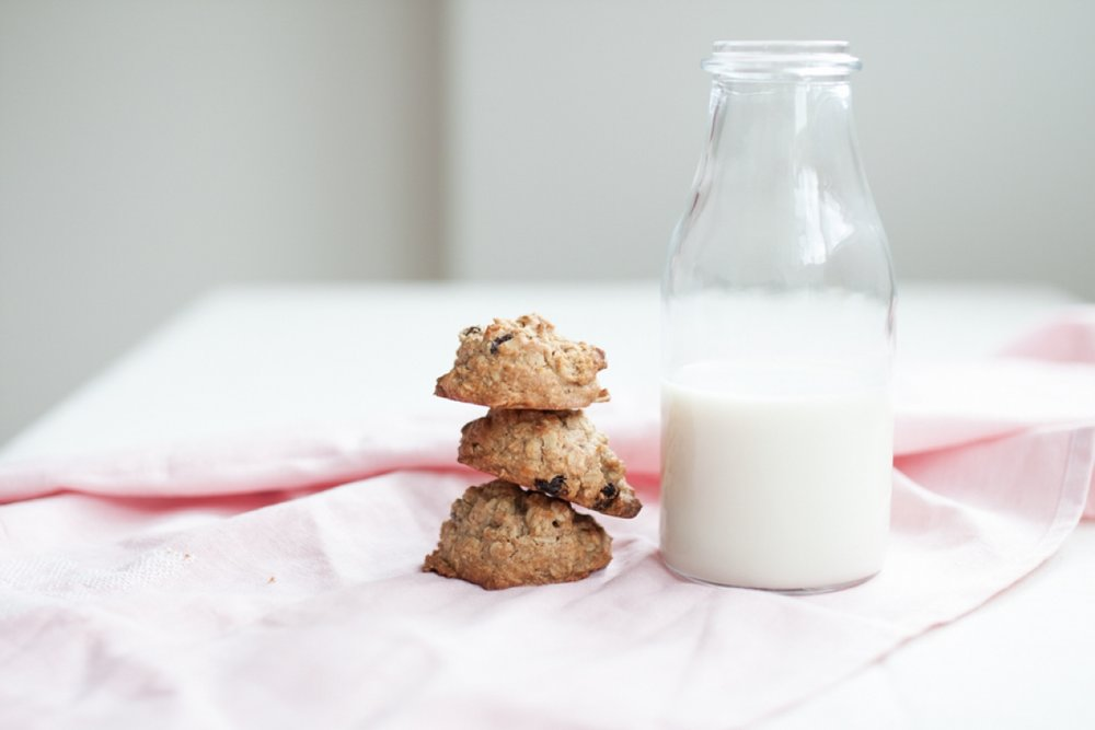 The best vegan breakfast cookies - The Little Plantation