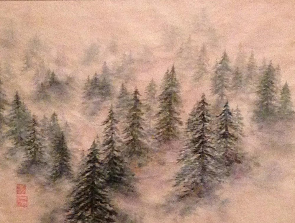 Wispy Fog and Pines