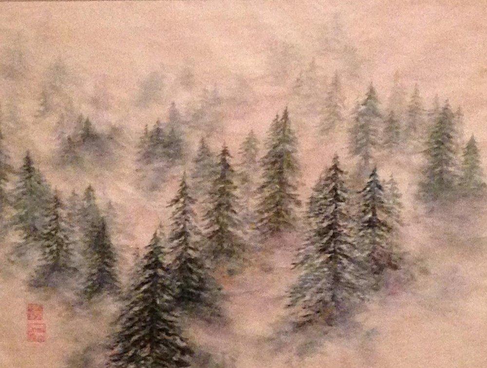 Wispy Fog and Pines