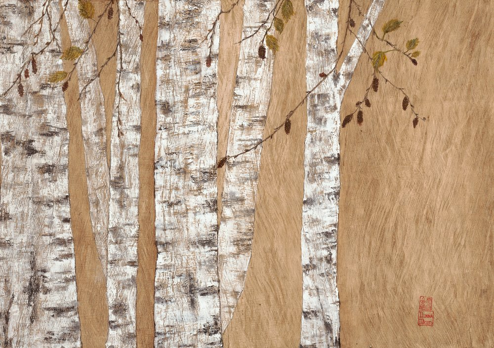 Birch On Bark