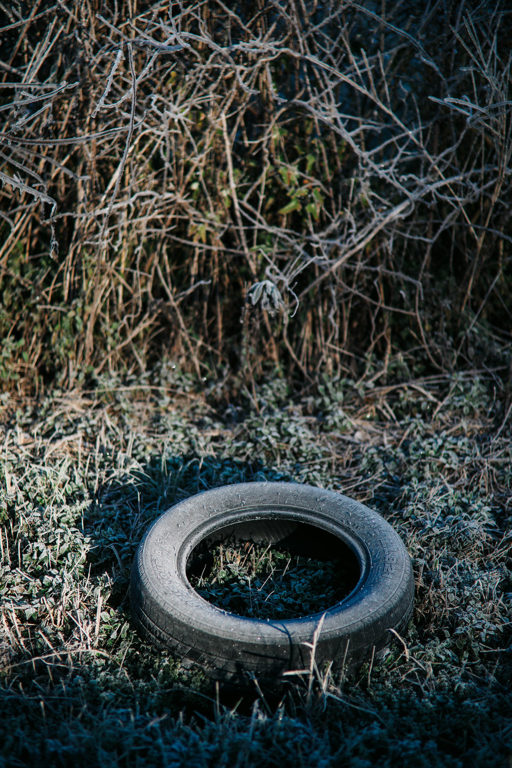 A tire sits on the side of the road and is covered in ice