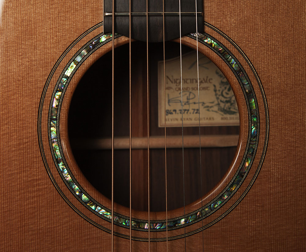 Paua Abalone Rosette