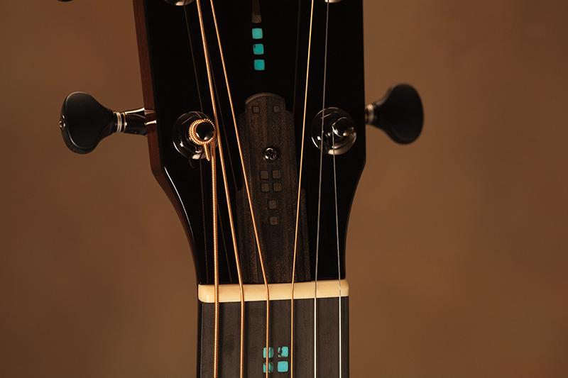 Copy of Custom Truss Rod Cover