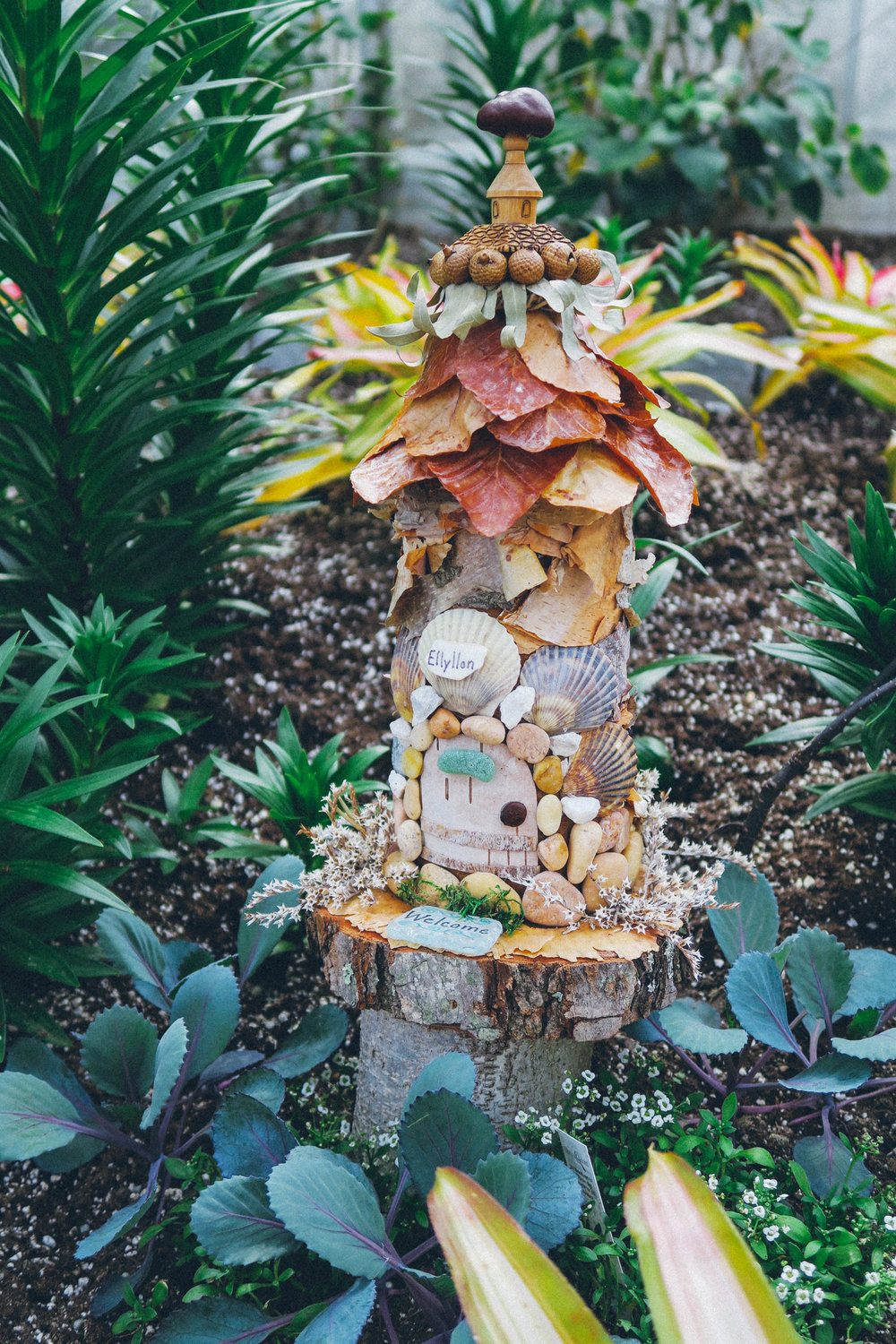 Fairies in the Botanical Gardens | affecionada