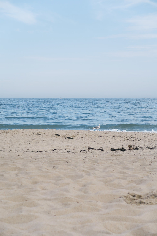 Beachy Keen | affecionada