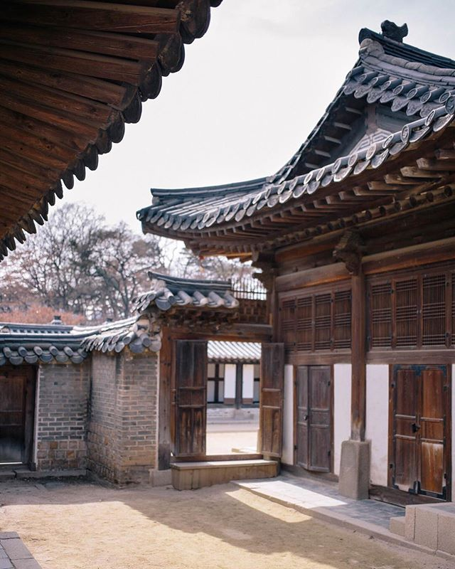The Secret Garden at Changdeokgung, one of the Five Grand Palaces and a UNESCO World Heritage Site, on affecionada today. Stop by through the link in profile. ✨