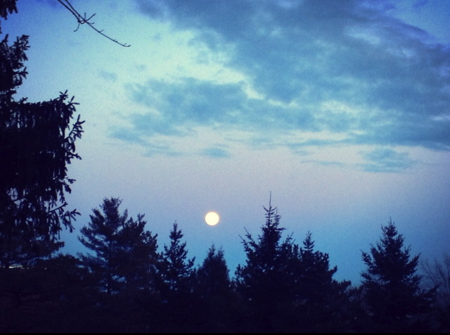 candy blue full moon.jpg