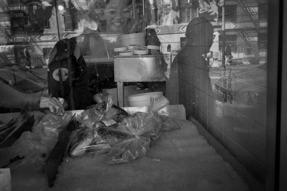 China-Town-Fish-Store.jpg