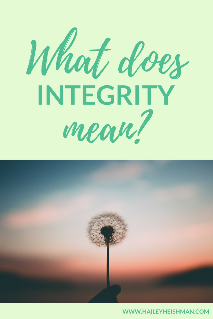 What does integrity mean