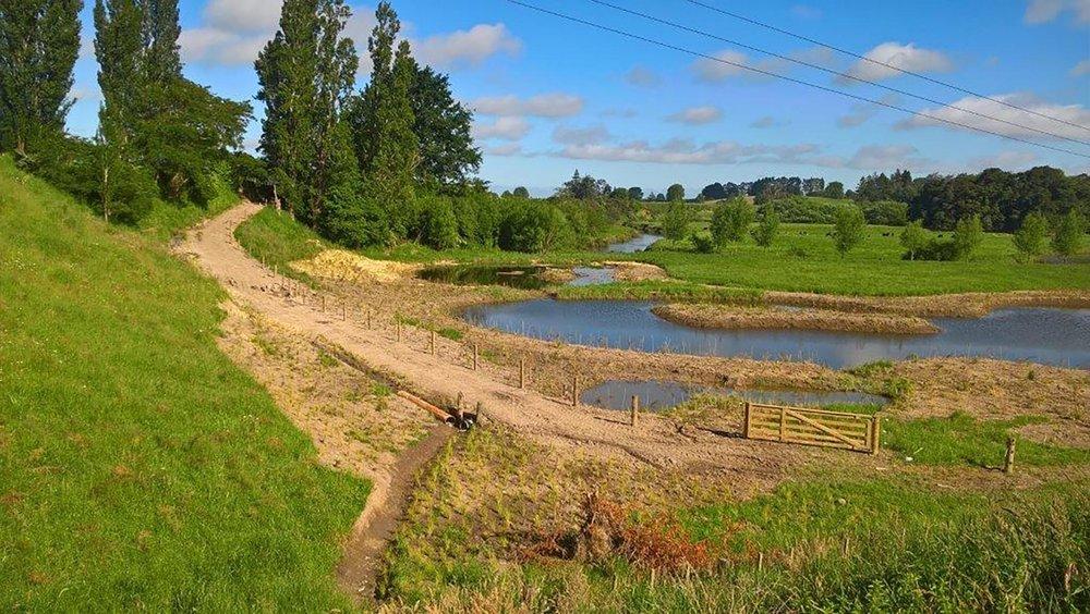 Copy of ManaakiTuna ponds.jpg