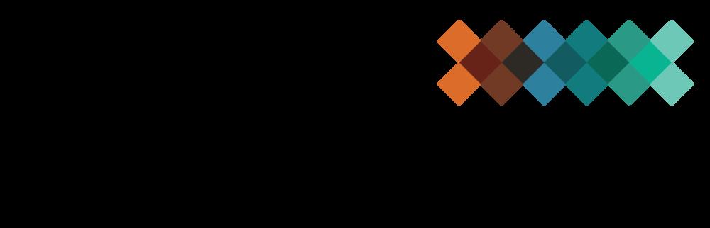 MFE FIF logo.png