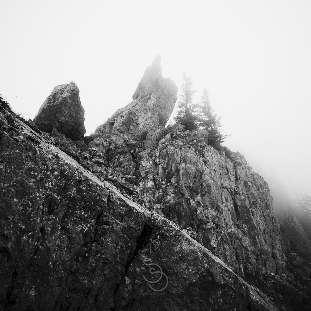 The infinte fog