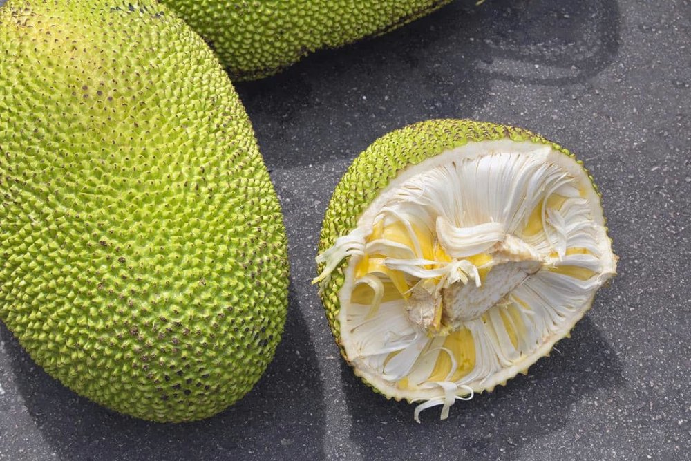 inside of a jackfruit.jpg