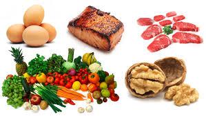 holistic healthy lifestyle food nutrition