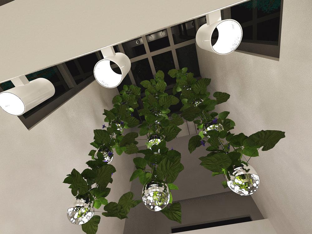 Light_Sculpture_Hanging_Garden_3-full.jpg