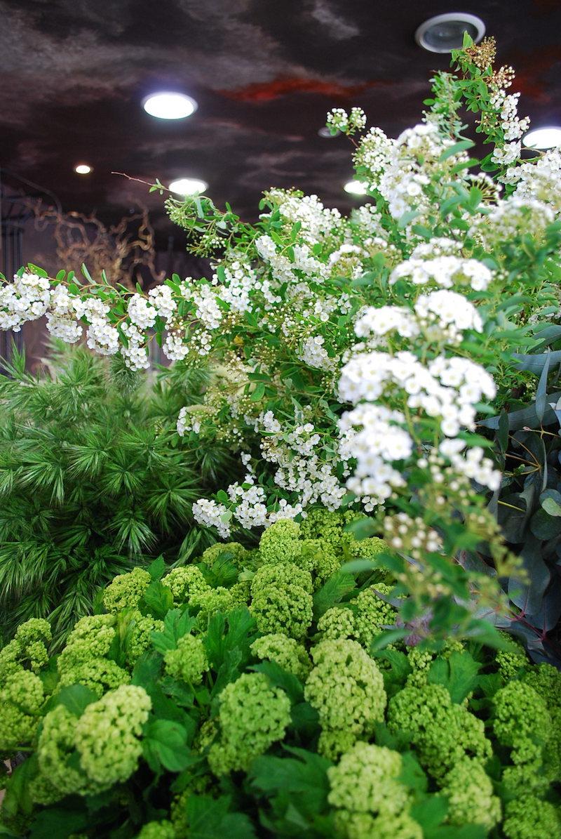 boutique-fleurs-fleuriste-paris-les-lilas-livraison-bouquet