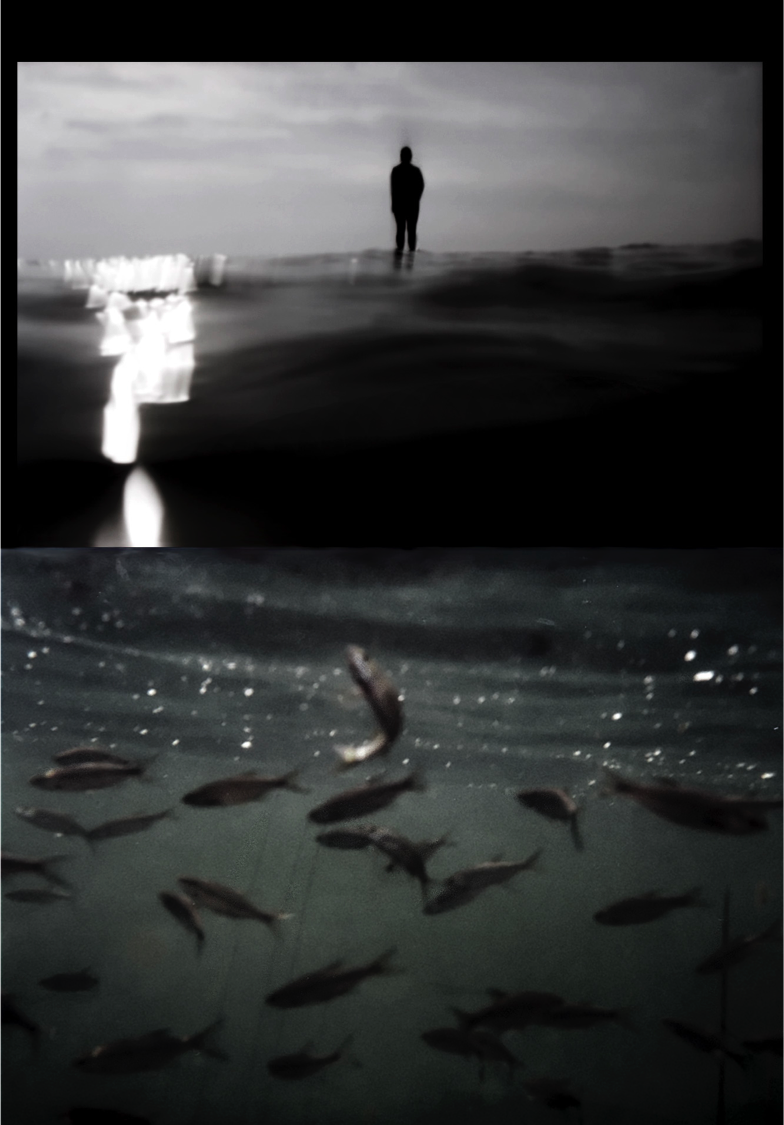 fish_goddess.png