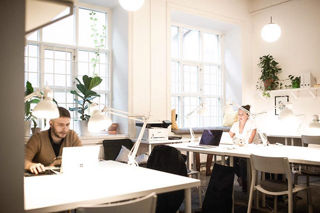 Which one is your favourite place at Box Space? If you still don't have one come find your perfect spot with our flex membership! Link in bio #boxspacemalmo #coworkingmalmo #frilansliv 📷: @francesca_cerri