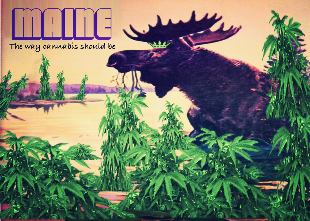 maine the way cannabis should be.png