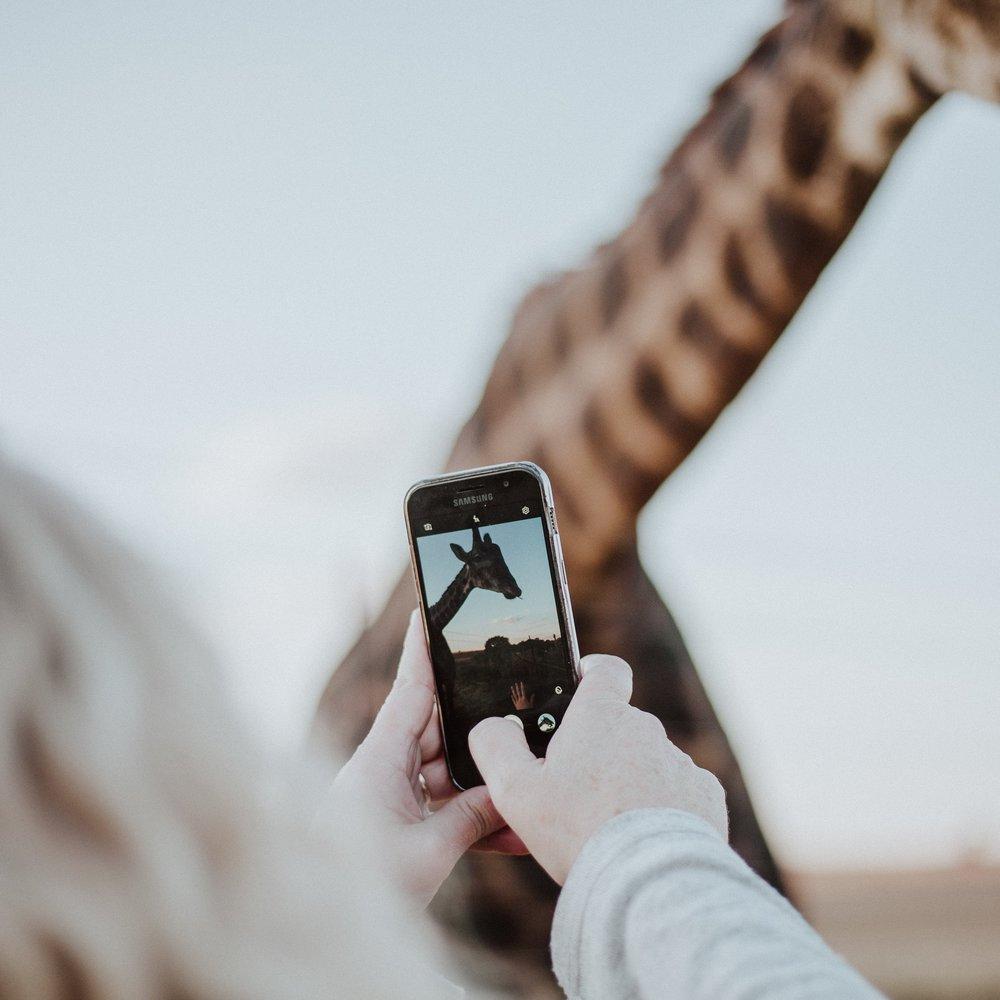 - ☑ Wählen Sie ein Thema/Einheit für Ihren Account und Ihre Bildmotive☑ Erzeugen Sie Fotos, die das Thema einfach aufgreifen☑ Setzen Sie das einheitliche Thema und den Bild Stil konstant fort